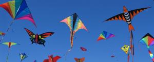 climax kite logo 1